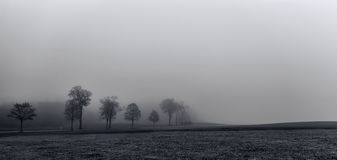 Eine nebelige Straße in Deutschland Lizenzfreies Stockfoto