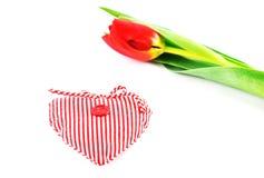 Eine niederländische Tulpe und ein kleines Herz Stockbilder