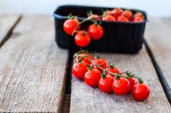 Eine Niederlassung von roten organischen Kirschtomaten auf einem hölzernen Hintergrund lizenzfreies stockbild