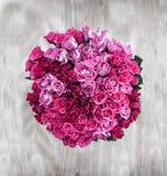 Eine obenliegende Ansicht eines Bündels von 80 Rosen in einer Kreisform ein Li Lizenzfreie Stockfotografie