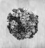 Eine obenliegende Ansicht eines Bündels von 80 Rosen in einer Kreisform ein Li Stockbild