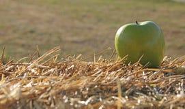 Eine Oma Smith Apple auf Stroh lizenzfreies stockbild