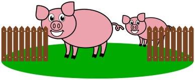 Eine organische Schweinehaltung Stockfotografie