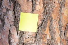 Eine Pappschachtel auf einem hölzernen Hintergrund lizenzfreies stockbild