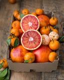Eine Pappschachtel des neuen Winters trägt mit roten Orangen und Minitangerinen Früchte lizenzfreies stockfoto
