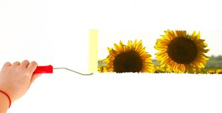 Eine Person, die eine Landschaft mit Sonnenblumen auf einer weißen Wand mit einer Rollenbürste malt Lizenzfreie Stockbilder