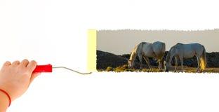 Eine Person, die eine Landschaft mit zwei Pferden auf einer weißen Wand mit einer Rollenbürste malt Lizenzfreies Stockbild