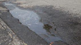 Eine Pfütze des Wassers auf der Straße stock video