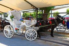 Eine Pferdekutsche in Aegina, Griechenland Lizenzfreies Stockbild