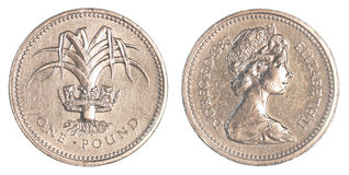 Eine Pfundmünze Stockfoto