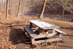 Eine Picknickbank teilweise bedeckt im Schnee im bloßen Winterholz lizenzfreies stockbild