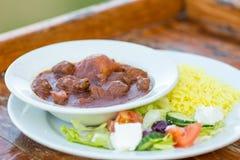 Eine Platte des Eintopfgerichts mit Salat und Reis Lizenzfreie Stockfotos