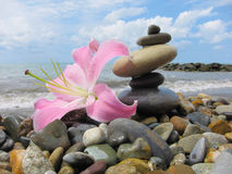 Eine Pyramide von fünf Steinen und eine Blume Lilie auf dem Strand Stockfoto