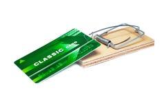 Eine Querneigungkarte in einem Mousetrap Lizenzfreies Stockfoto