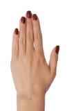 Eine Rückseite der Hand der Frauen Lizenzfreie Stockfotografie