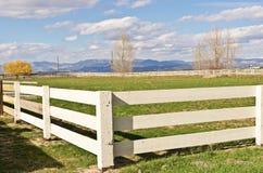 Eine Ranch, viele Zäune lizenzfreie stockfotos