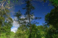eine Reflexion ist im Wasser lizenzfreies stockfoto