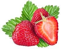 Eine reiche Erdbeerfrucht Lizenzfreies Stockfoto