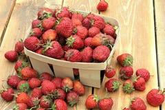 Eine reife Erdbeere ist in einem kleinen Korb lizenzfreies stockbild