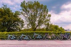 Eine Reihe von Fahrrädern Stockbild