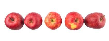 Eine Reihe von roten Äpfeln V Stockfoto