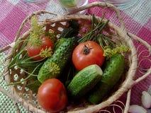 Eine Rekordernte von Lebensmittel-Diätprodukteen des Gemüses gesunden lizenzfreie stockfotos