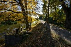 Eine romantische Straße auf der Bank längsseits von Luznice-Fluss, Tschechische Republik Stockbild