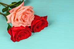 Eine rosa und zwei roten Rosen auf einer blauen Hintergrundnahaufnahme Lizenzfreies Stockbild