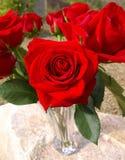Eine Rose für Sie Lizenzfreies Stockfoto