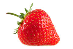 Eine rote Erdbeere. Lizenzfreies Stockfoto