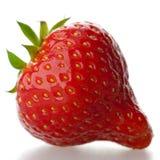 Eine rote Erdbeere, getrennt auf einem weißen Hintergrund. Stockbilder