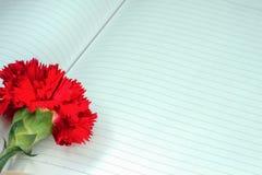 eine rote Gartennelke auf einem Notizbuch stockfotografie