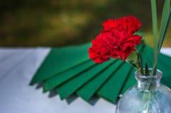 Eine rote Gartennelke und grünen Servietten auf einer Tabelle lizenzfreie stockfotos