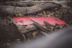 Eine rote hölzerne Planke angeschmiegt unter gefallenen Bäumen in Jester Park, Iowa stockbild