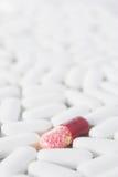 Eine rote Pille in vielen weißen Pillen Stockbild