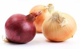 Eine roten und zwei gelben Zwiebeln (Lauch) Lizenzfreies Stockbild