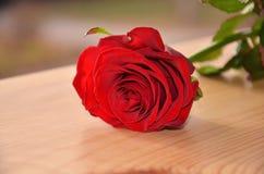 Eine Rotrose auf einem Holztisch Stockfotos