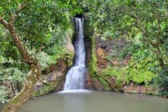 Eine sch?ne Ansicht von Alexandra-F?llen, Mauritius stockfoto