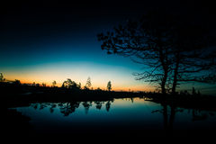 Eine schöne, bunte, künstlerische Landschaft eines Sumpfes im Sonnenaufgang Lizenzfreie Stockbilder