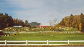 Eine schöne große Ranch mit den Traktoren und Pferden, die das Gras mit einer roten Scheune im Abstand weiden lassen stockfotografie