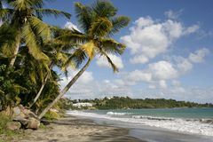 Eine schöne Landschaft in Martinique Stockbild