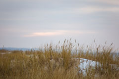 Eine schöne Landschaft von Dünen auf der Küstenlinie von Ostsee Stockbilder