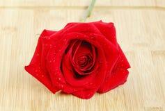 Eine schöne Rotrose auf Holzfuß Lizenzfreie Stockbilder