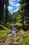 Eine schöne szenische Ansicht von Pahalgam Stockbild