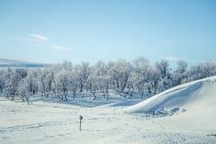 Eine schöne weiße Landschaft eines Tages des verschneiten Winters mit Abdrücken Lizenzfreie Stockfotografie