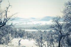 Eine schöne weiße Landschaft eines Tages des verschneiten Winters mit Abdrücken Lizenzfreie Stockbilder