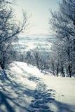 Eine schöne weiße Landschaft eines Tages des verschneiten Winters mit Abdrücken Lizenzfreie Stockfotos