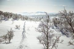 Eine schöne weiße Landschaft eines Tages des verschneiten Winters mit Abdrücken Stockfoto