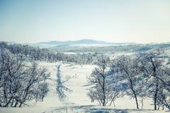 Eine schöne weiße Landschaft eines Tages des verschneiten Winters mit Abdrücken Stockbild