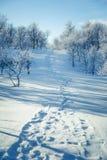 Eine schöne weiße Landschaft eines Tages des verschneiten Winters mit Abdrücken Stockfotos